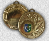 Медаль 1