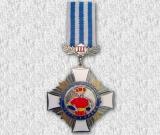 Медаль нагододна 05